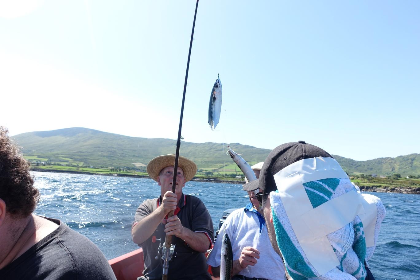 De tweede vangst